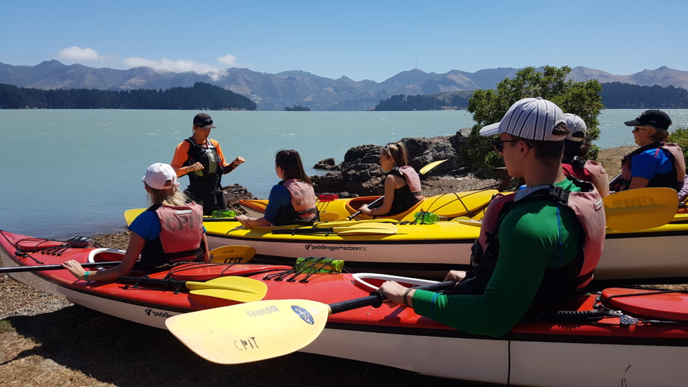 Kayaking in Lyttelton with Adventure By Nature